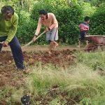 Mencangkul Tanah